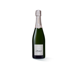 CHAMPAGNE MAILLY GRAND CRU EXTRA BRUT 75 CL
